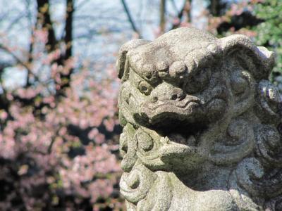 自転車で高徳神社へ撮影ついでにお参り