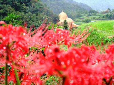 アートの旅 香川県 瀬戸内国際芸術祭:小豆島・豊島・高松・女木島・男木島