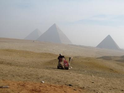 エジプト定番観光と動乱の旅 (エジプトの憂鬱)