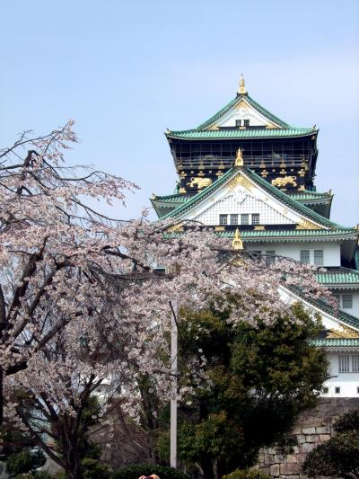 ・*。2011大阪・桜の開花情報。*・造幣局、大阪城、大川沿い、見頃はいつ?【ご近所桜日記】