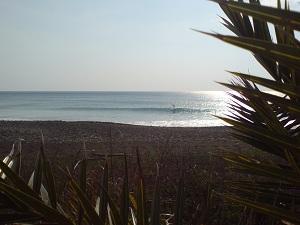 高知県でサーフィン