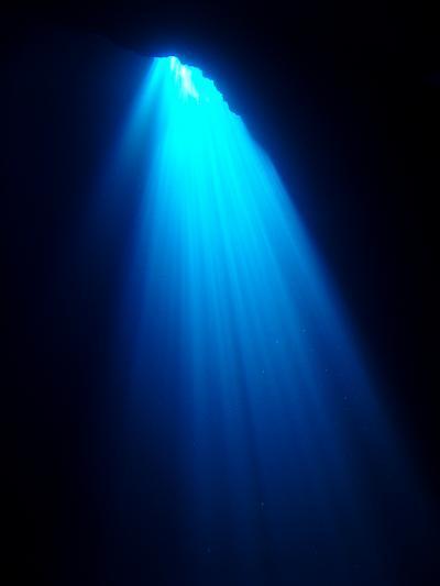 2010 3回目 (ロタホールに大満足♪)ロタ ダイビング