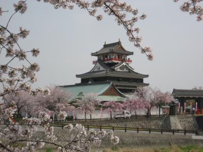 近くに行きたい♪ 「地元愛知の桜の名所を訪ねよう(*^_^*) ~Vol.4 清洲城~」