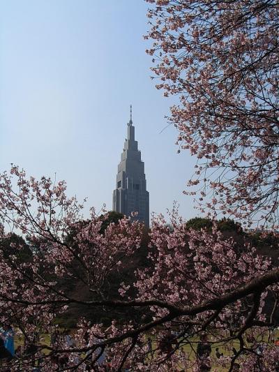 新宿御苑とフォーシーズンズホテル椿山荘でランチ