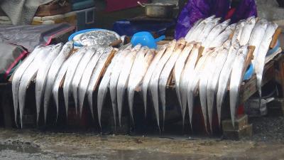 釜山、ジャガルチ市場を歩く