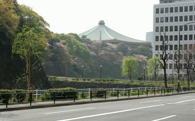 ちふ散歩(六本木~赤坂、水道橋~東京駅)。ちふの一番長い日。