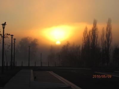 『燃える大地』<ゴンドワナの大陸を旅して>(186)キャンベラの朝焼け。
