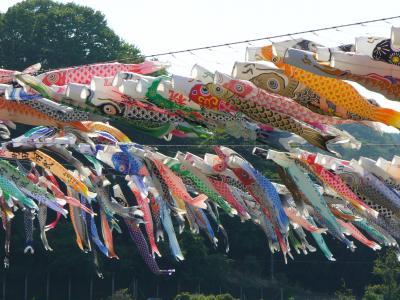 泳げ鯉のぼり相模川 '06