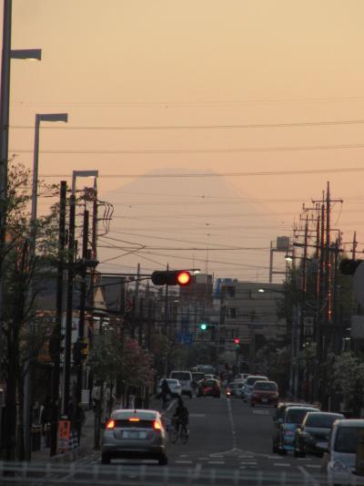 久しぶりに見られた影富士