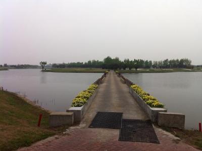 第175回上海グリーンクラブ(太陽島GC)