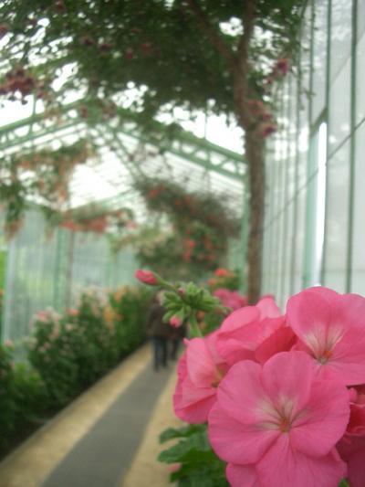 ラーケンの王室温室園は優雅な王室の遊び。