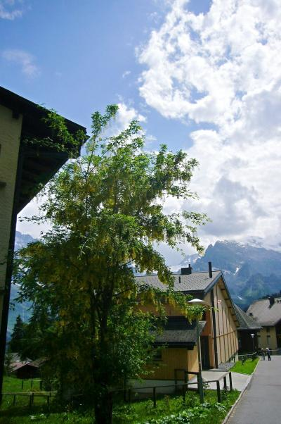 2010 スイスの旅~ ミューレンへ ~3日目その10