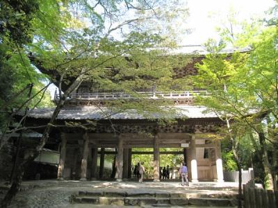 春の永源寺