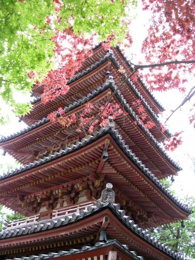 海住山寺 国宝の五重の塔(京都府木津川市)