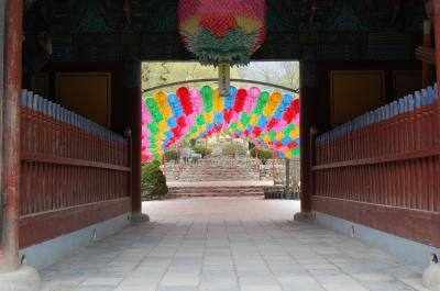 (ちょっと遅い)春の韓国2011③【扶安・安城・広州】