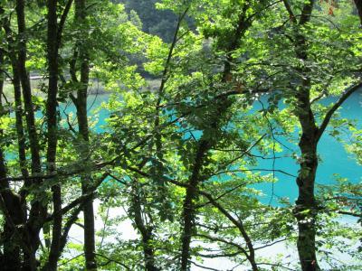 クロアチア縦断 ドライブ旅行記 8日目 プリトヴィッツェ編③下湖群2