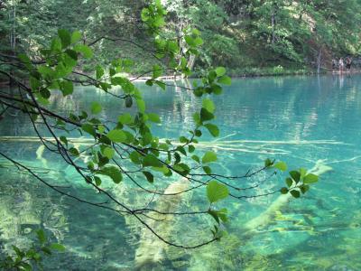 クロアチア縦断 ドライブ旅行記 8日目 プリトヴィッツェ編④上湖群1