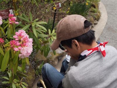 ゴールデンウィーク前半 箱根湿生花園を気持ちよく散策 2011年4月