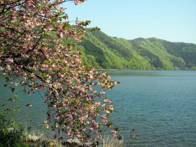 子どもと一緒に歩く、奥琵琶湖の隠れ里・菅浦~近江のむかし町をあるく~