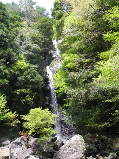 予想以上に素晴らしかった!『宮の滝』(五条市大塔)◆奈良県十津川村の滝めぐり【その1】