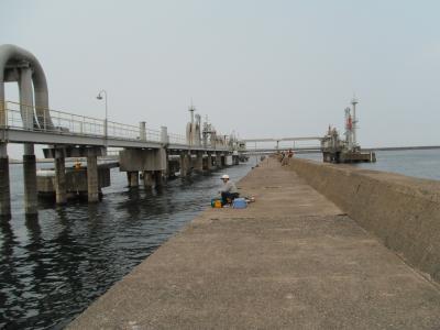 福井新港へアジ釣り ~堤防、防波堤~