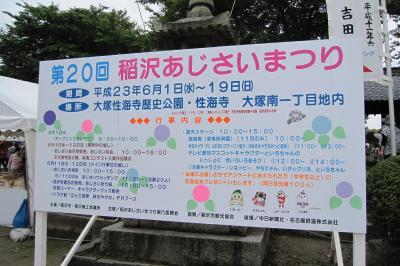 2011梅雨、性海寺の紫陽花(1)伊奈紅手鞠、紅手鞠、湖畔、青海、花吹雪