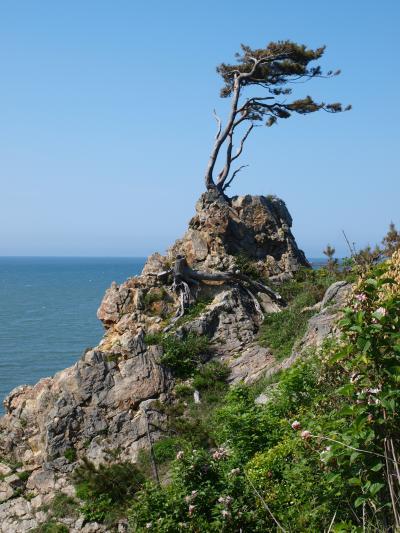 国定公園 「 花立岩 」 & 「 Banana Winds 」 の小さな旅 < 新潟市西蒲区・長岡市 >