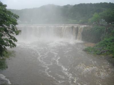 雨の原尻の滝。すごい迫力。さすが、日本のナイアガラ。
