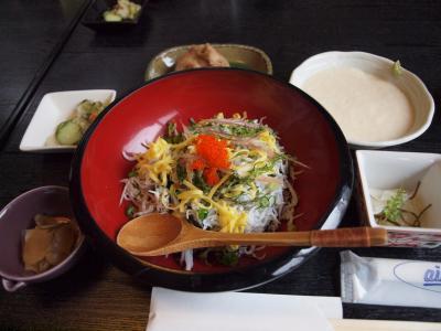 東急ハーヴェストクラブVIALA箱根翡翠と花菜さんでの美味しいランチ 2011年6月
