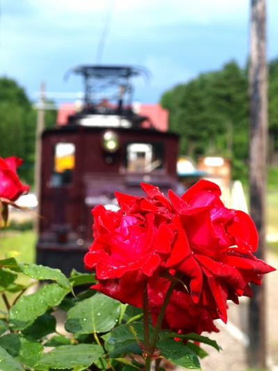 「 冬鳥越の薔薇 」 & 「 善作茶屋 」 の旅 < 新潟県加茂市 >