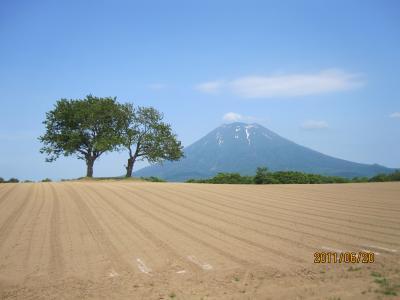 初夏のニセコ アンヌプリの頂へ