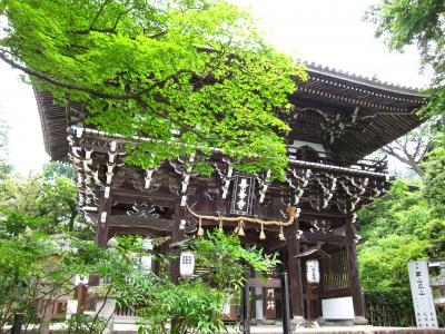 2011年 京都府 湯の花温泉