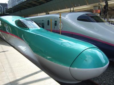 JR東日本パスを使って青森日帰り旅行を決行!メインは「はやぶさ」乗車