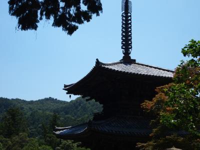 兵庫・加西の一乗寺国宝三重塔