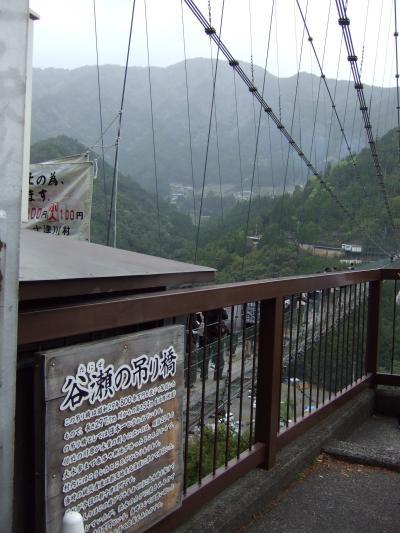 2011春 日本一の吊り橋を渡ろう~谷瀬の吊り橋~