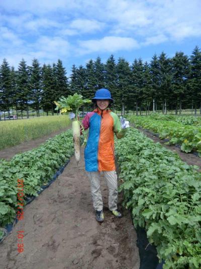 ◆初夏の北海道満喫ドライブ旅行◆その1:北広島「くるるの杜」で大根収穫体験!