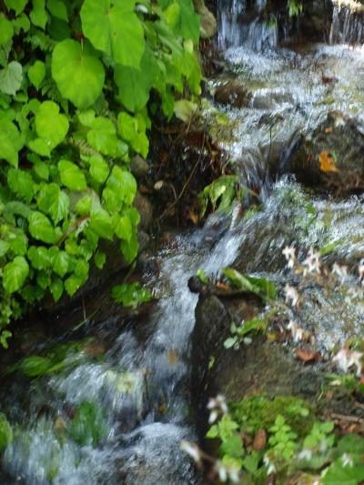 里山の小さな渓谷 峠のいで湯 「 亀 徳 泉 」 立ち寄りの旅 < 新潟県五泉市 >