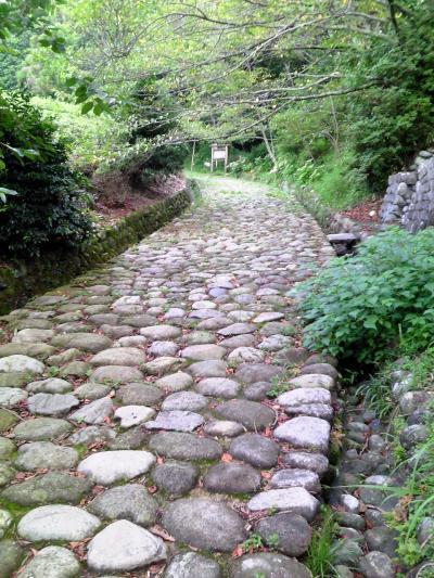 東海道金谷宿 石畳茶屋でお茶を飲もう!