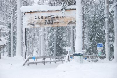 フィンランドひとり旅 ロヴァニエミ+ヘルシンキ 3日目その1 ラヌア動物園