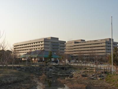 2011/2 大宮 見沼公園と自治医大さいたま医療センター