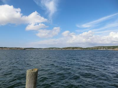 スエーデンで刺身釣り・・・しかし釣れたのは・・・