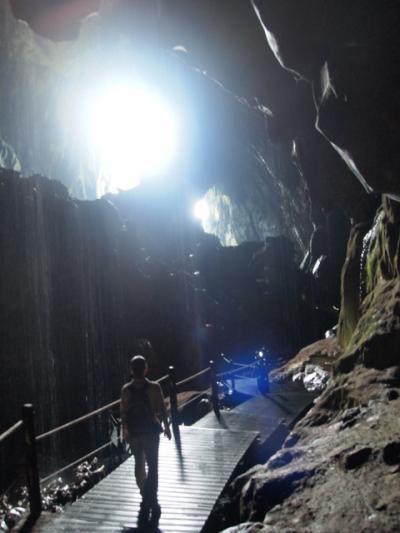 グヌン・ムル国立公園、コウモリのドラゴンダンス