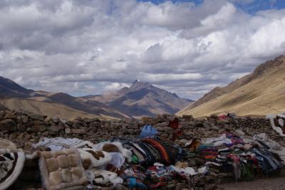 ペルー、ボリビア初の南米女一人旅⑤~プーノへ Inca Expressの旅~