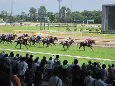 本州3県縦断 まずは新潟で競馬とメシです