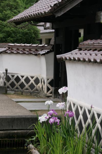 小さな街・小さな旅:津和野を訪ねて