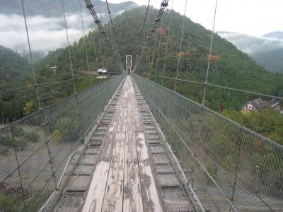 2010年11月 伊勢、世界遺産熊野古道を歩く 1泊2日旅行 Part5(谷瀬の吊り橋)