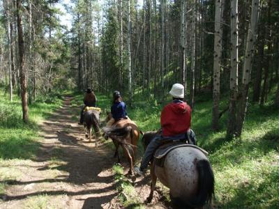 馬の背に揺られてのんびりお散歩 /Jasper ジャスパーの楽しみ方-乗馬編