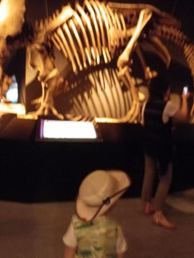 【かーくん 02歳04ヶ月】 上野でパンダだ!恐竜だ! ~恐竜篇~