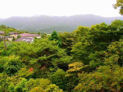 箱根・ひめしゃらから南部町・船山温泉へ    前編