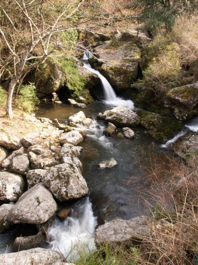 滝メグラーが行く113 るり渓